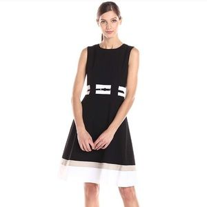 Calvin Klein Fit and Flare Professional Dress
